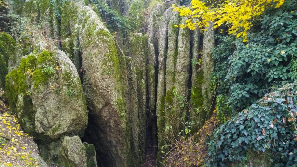 Formazione del parco dei gessi di Bologna. Gianmarco Virzì.
