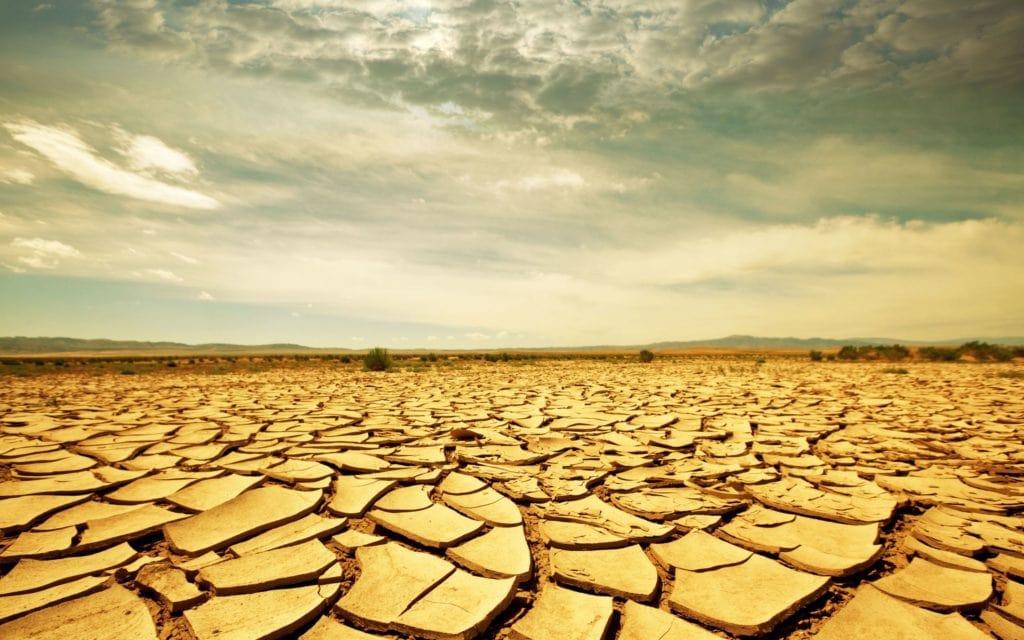 Effetti della desertificazione (fonte: Pinterest)
